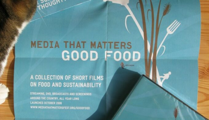 media that matters dvd